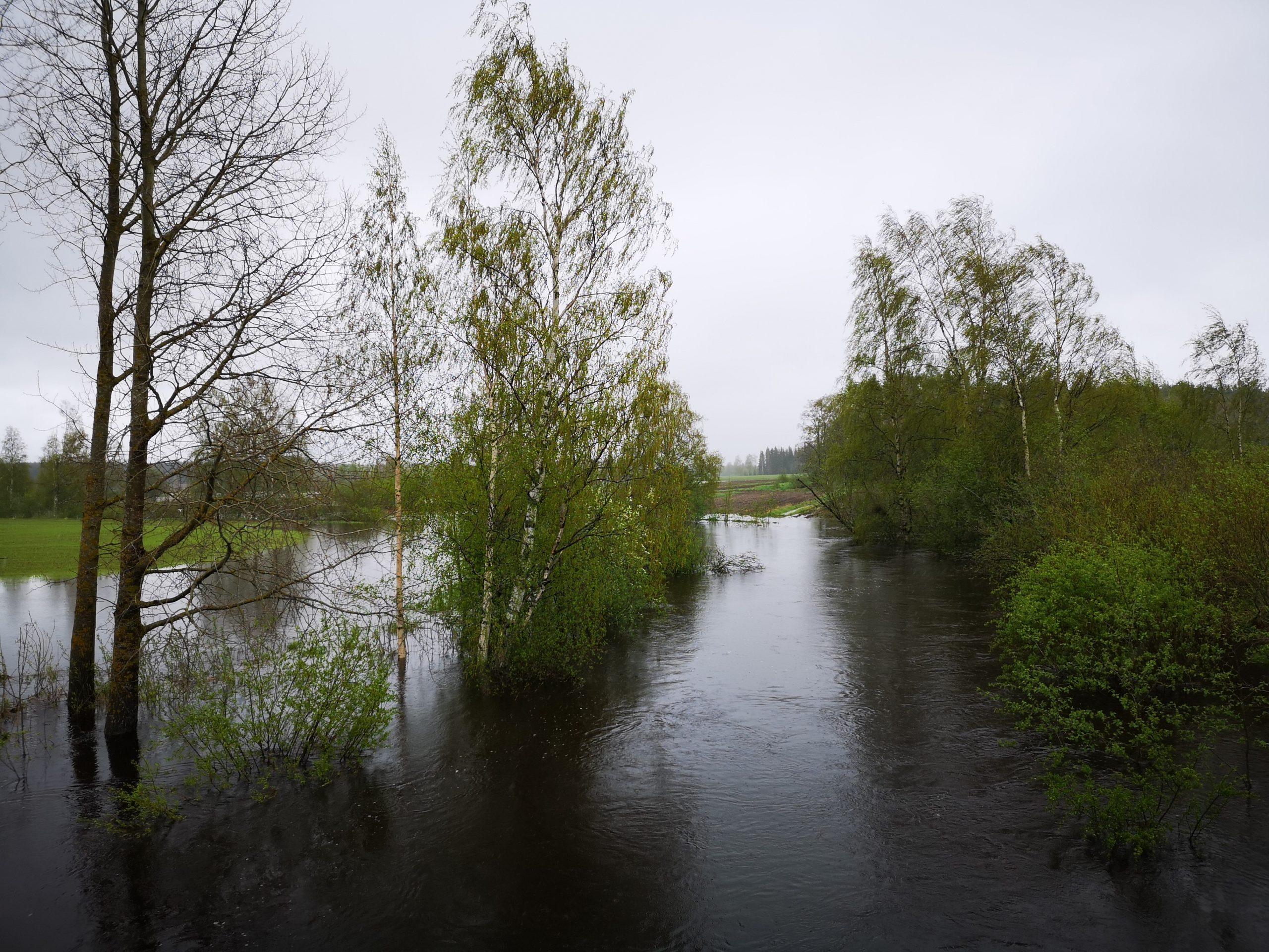 Kevät tulvat 22.5.2021 Kuninkaanjoella